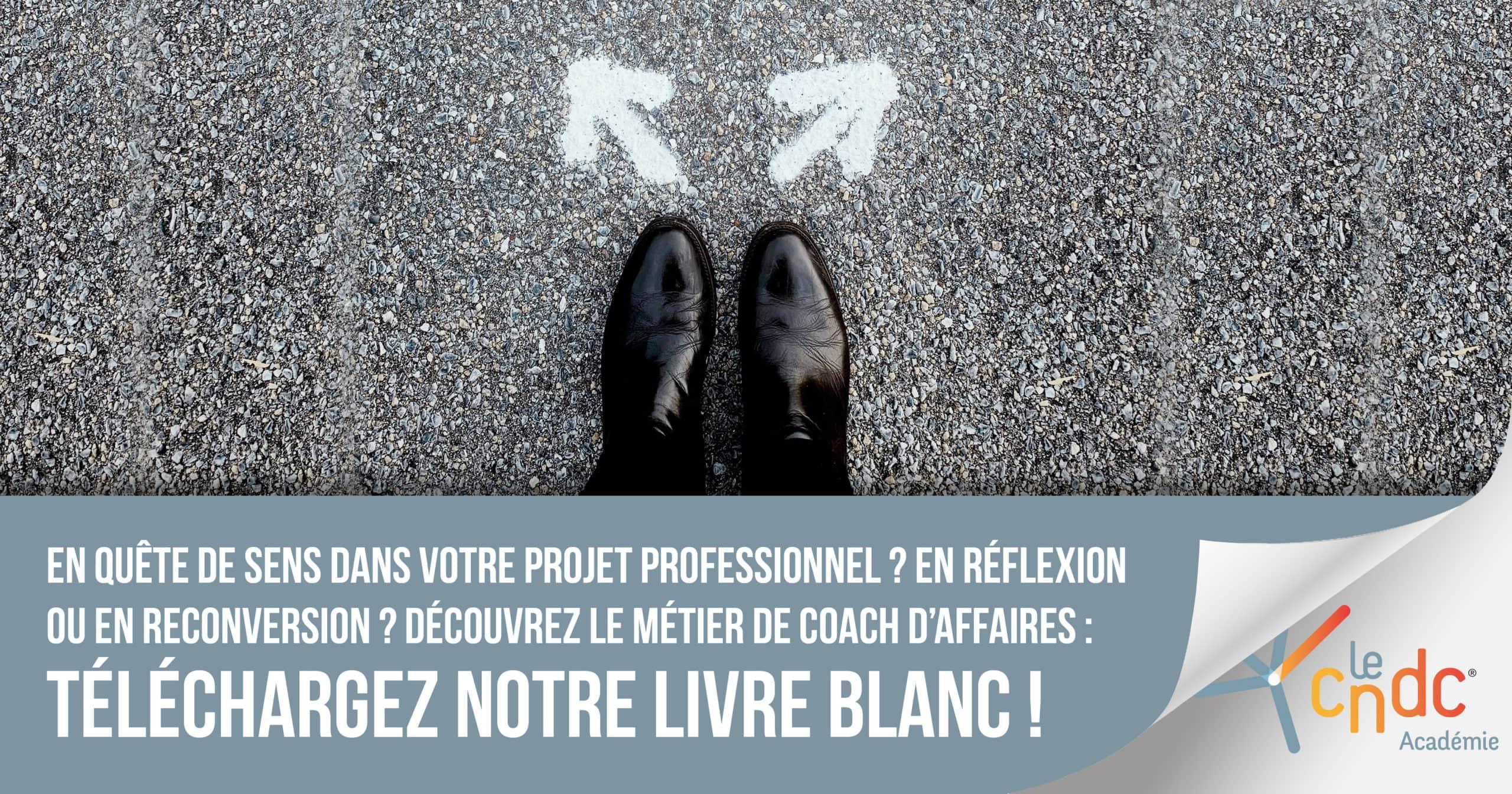 Téléchargez le livre blanc – Devenir coach d'affaires