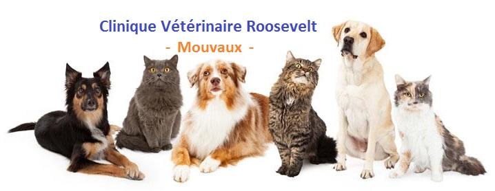 Clinique Vétérinaire Roosevelt à Mouvaux